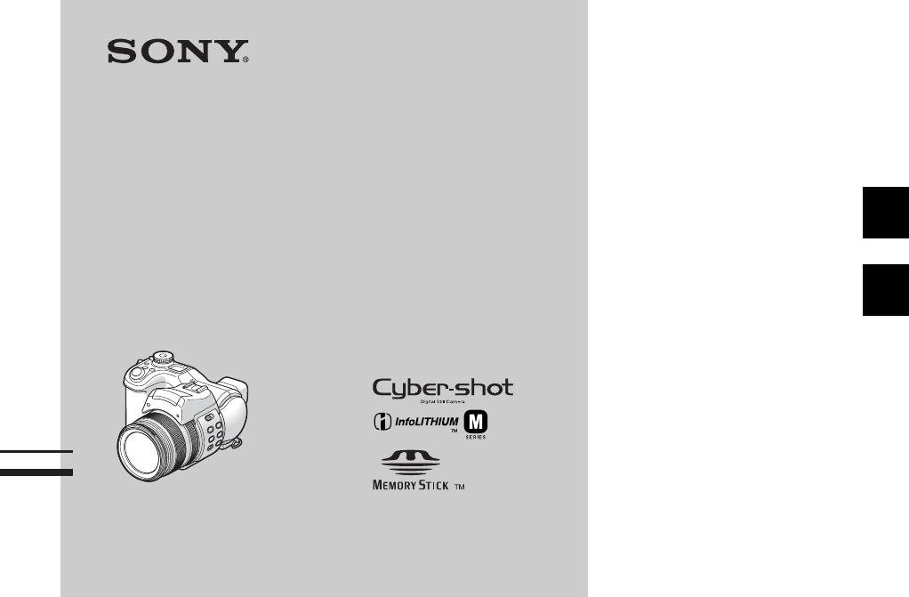 Фотоаппарат Sony Dsc-f828 инструкция - картинка 3